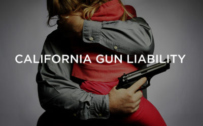 California Gun Liability